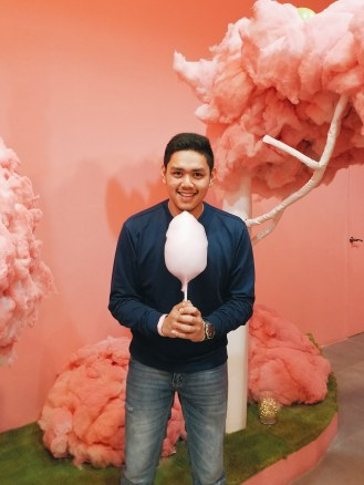Cotton Candy Room